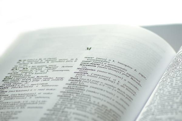 odborná terminológia v článku